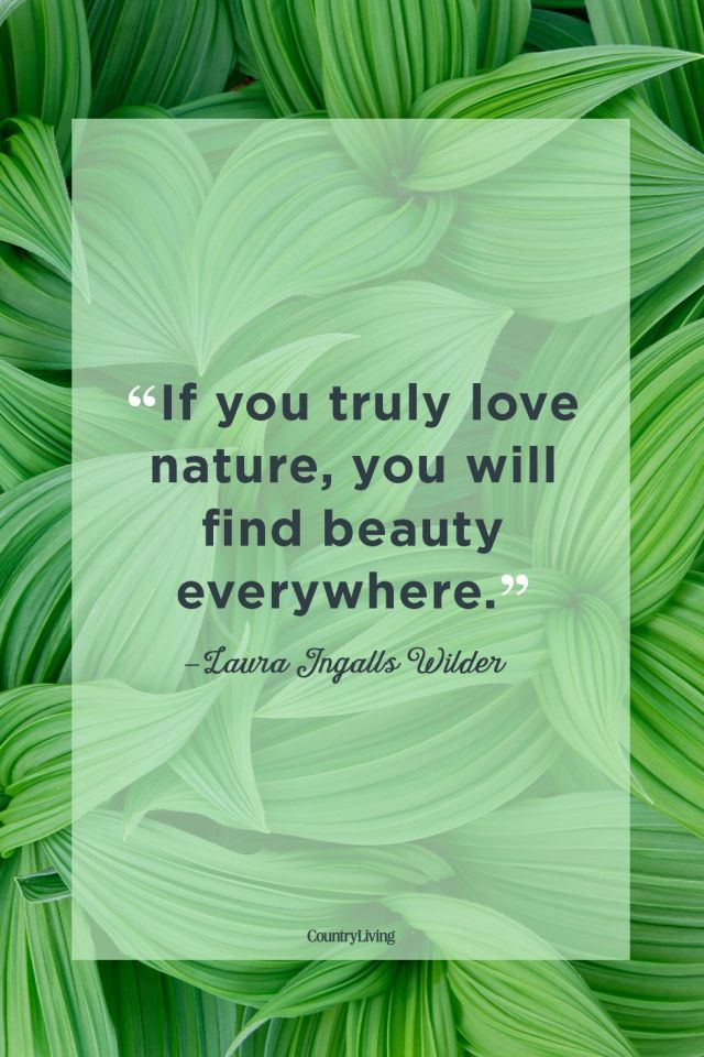 Love nature
